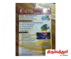 GTS Global Solutions